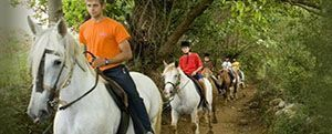 Paseos a caballo por Asturias