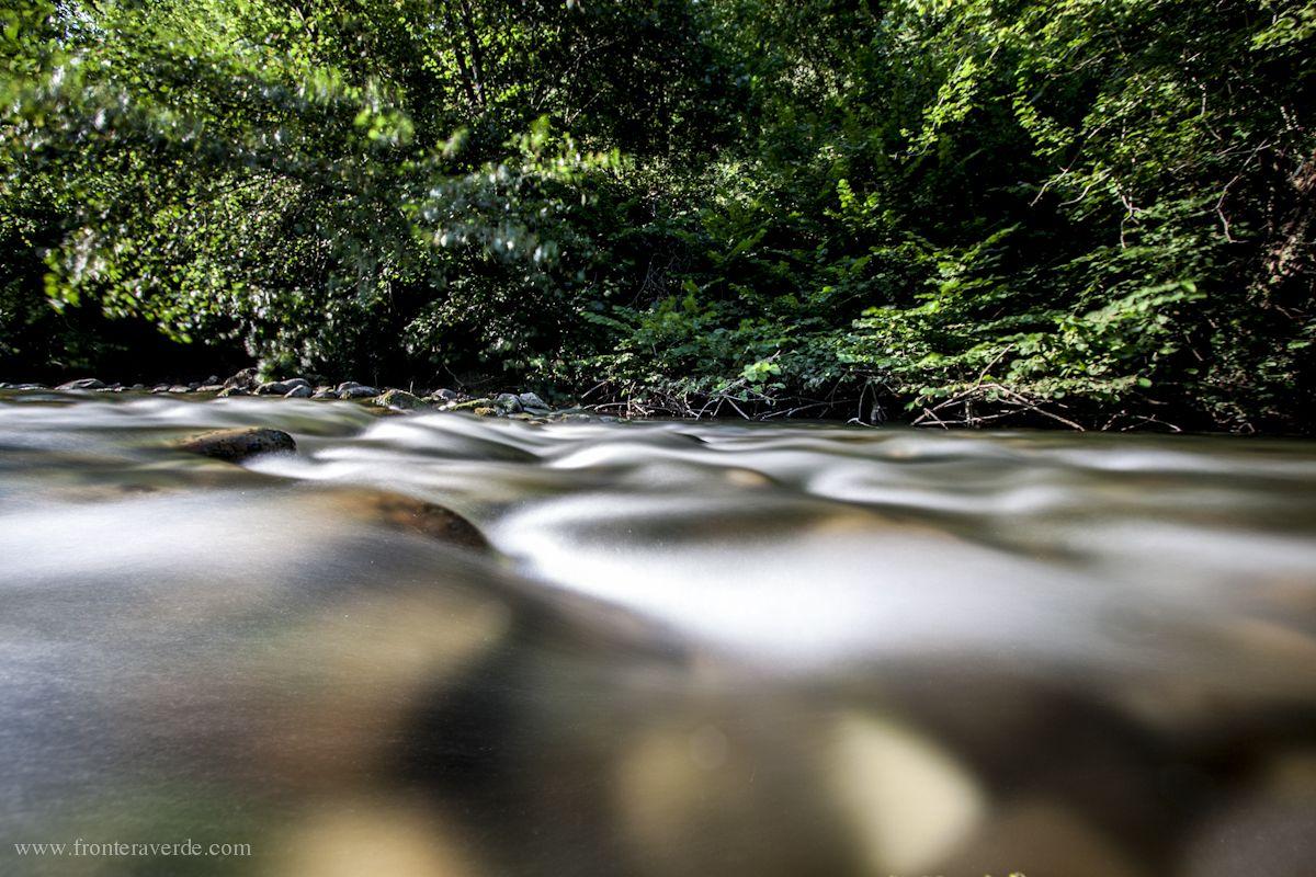 Escapada de pesca de salmón por los ríos de Asturias.