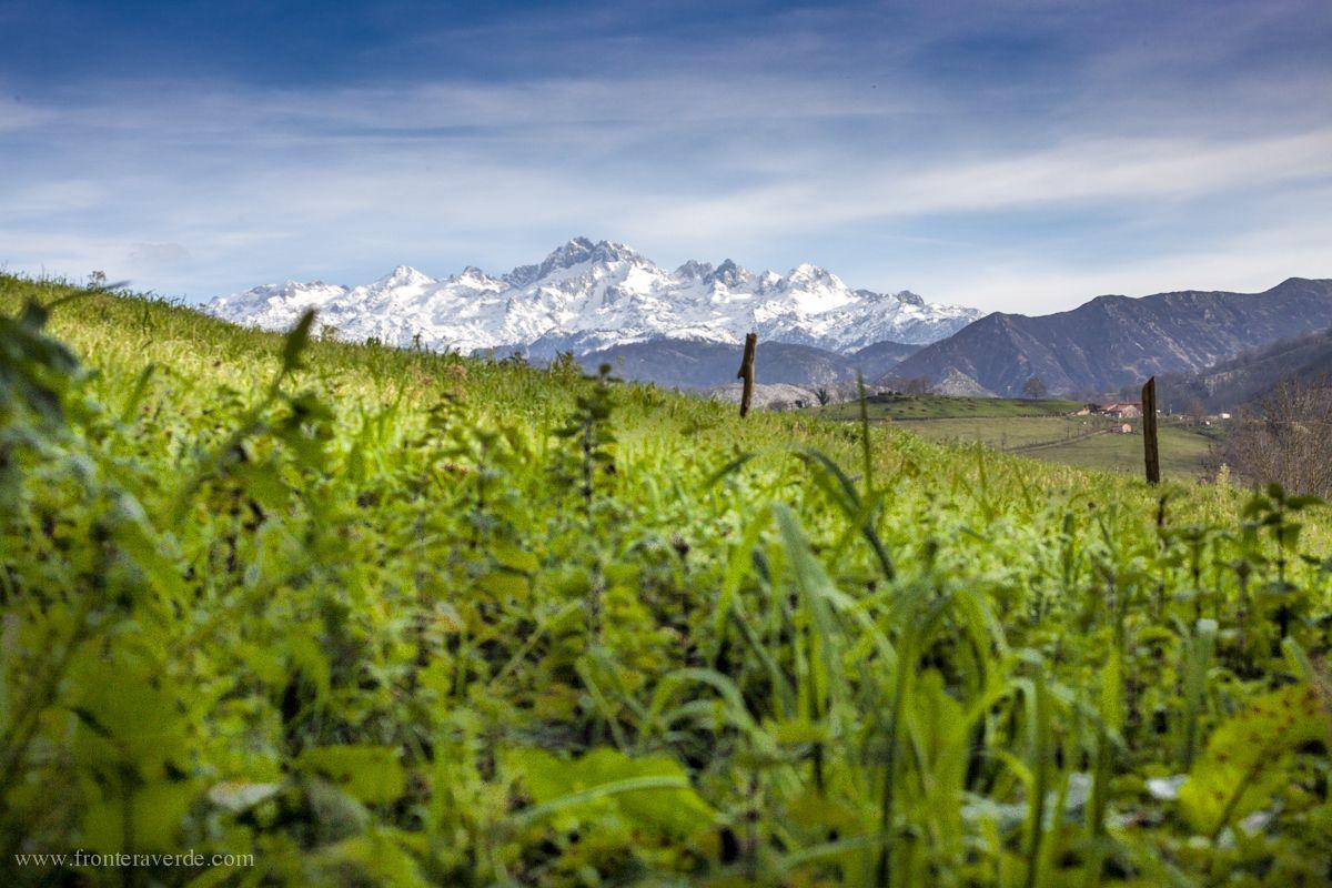 Picos de Europa - Frontera Verde Aventura