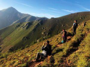 Observación de fauna en Asturias